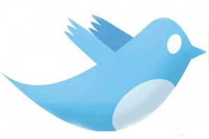 twitter logo 300x200 Declassified, now on Twitter.